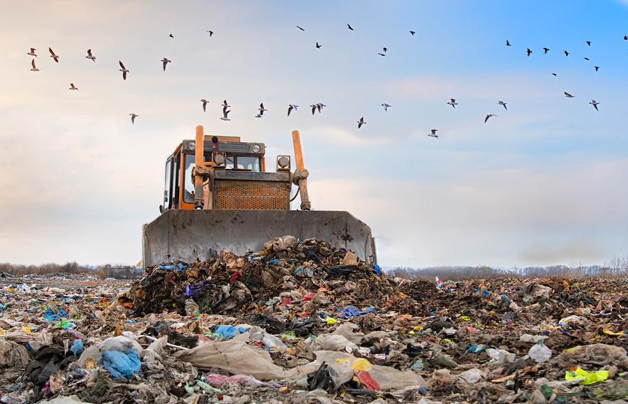 Sei alla ricerca di una ditta di trasporto e smaltimento rifiuti? Ecco chi puoi contattare